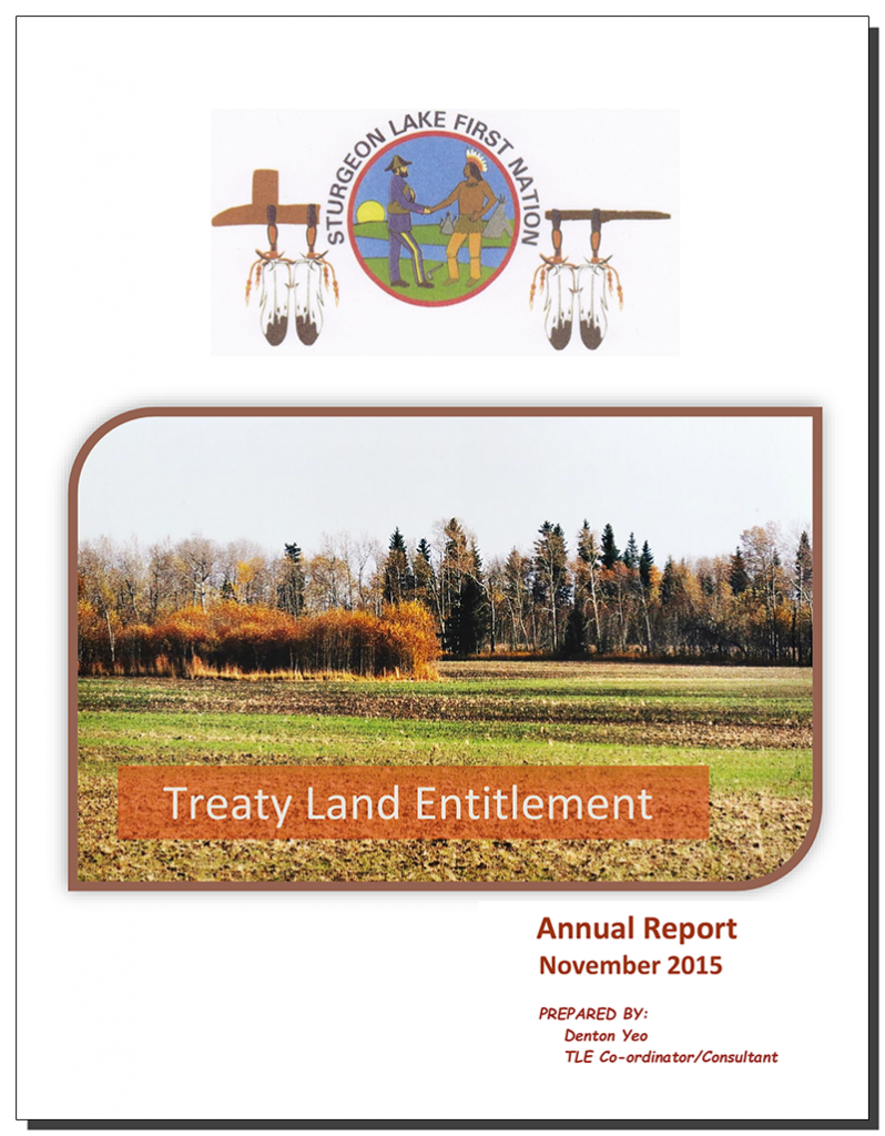 TLE Annual Report 2015-12-17